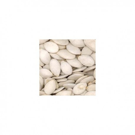 graine de courge crue extra 1/2 kg