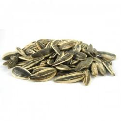 graine de tournesol grillee salee 1/2 kg