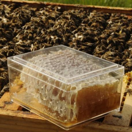 Miel en rayon 400g